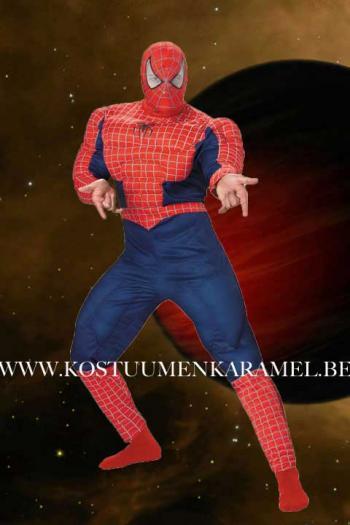 Spiderman Kostuum