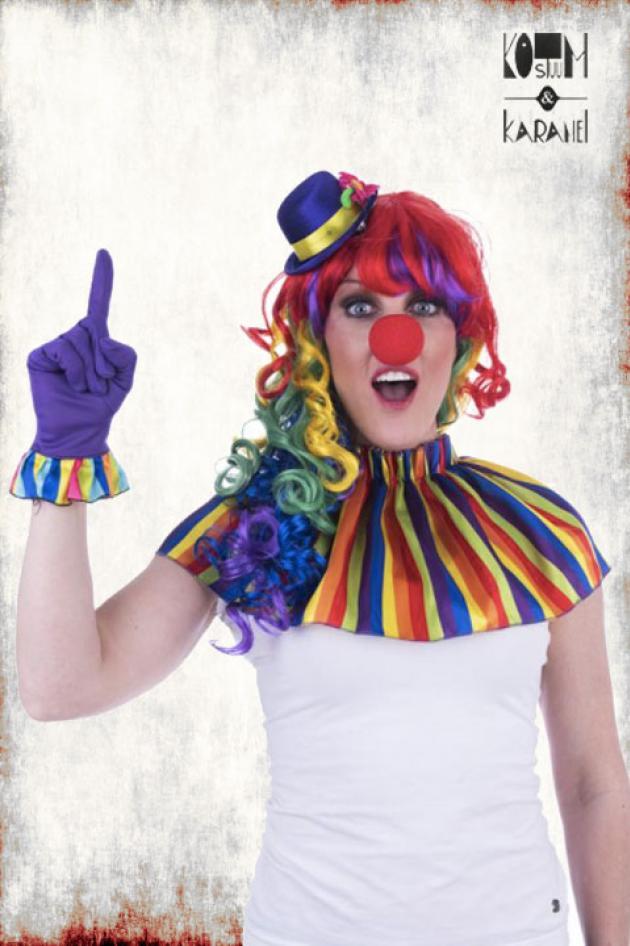 Clownsetje Regenboog
