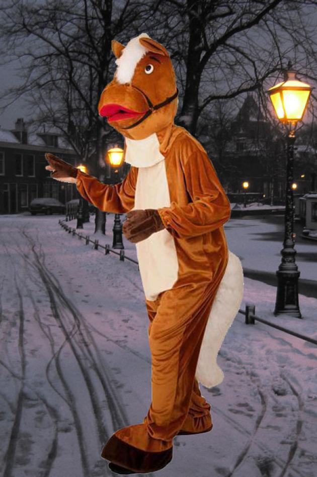 Paard van de Sint Kostuum