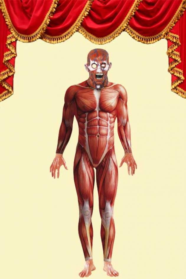 Anatomy Man