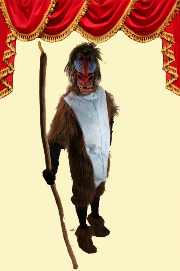Rafiki Kostuum Baboon