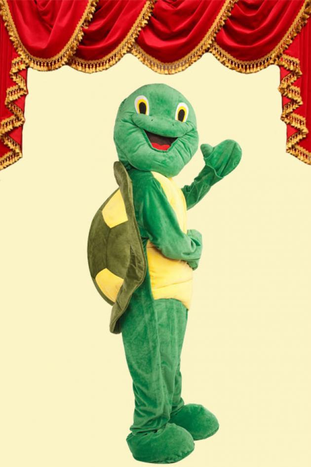 Kostuum Schildpad