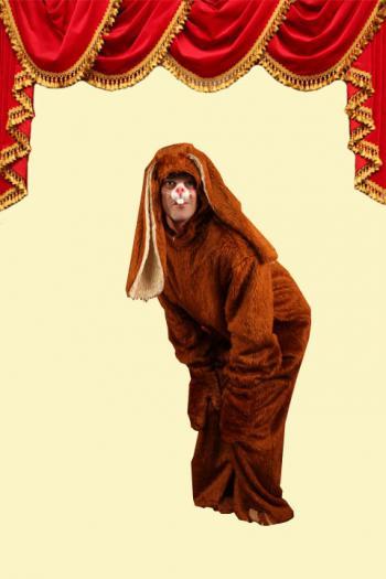 Kostuum Haas